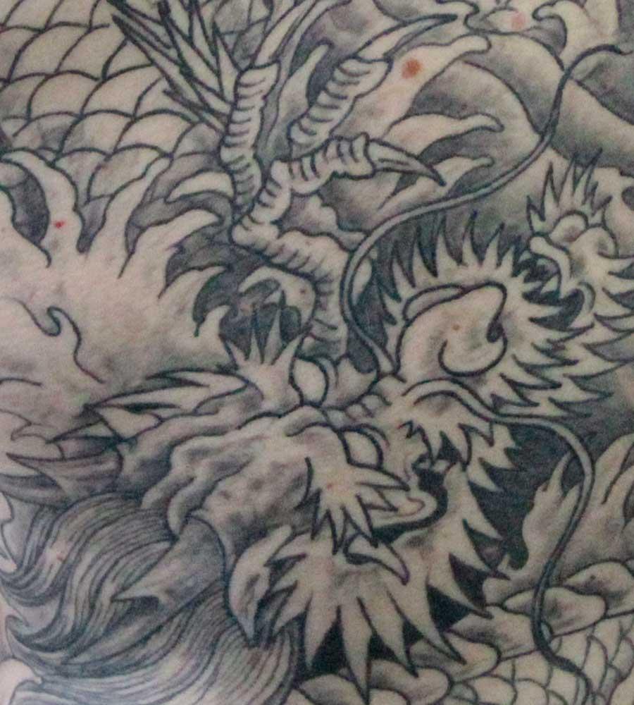 tête du dragon, ombrages, detail du tatouage.
