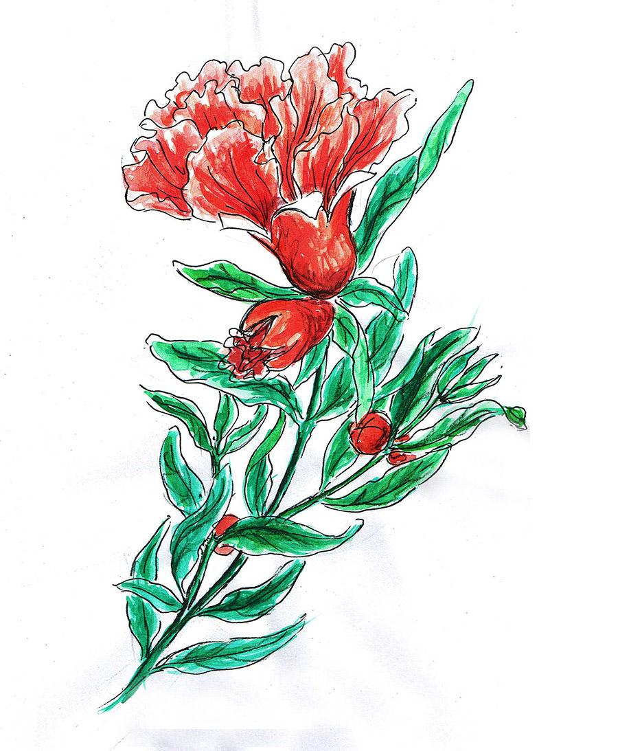 tattoo floral fleur de grenadier couleur dessin