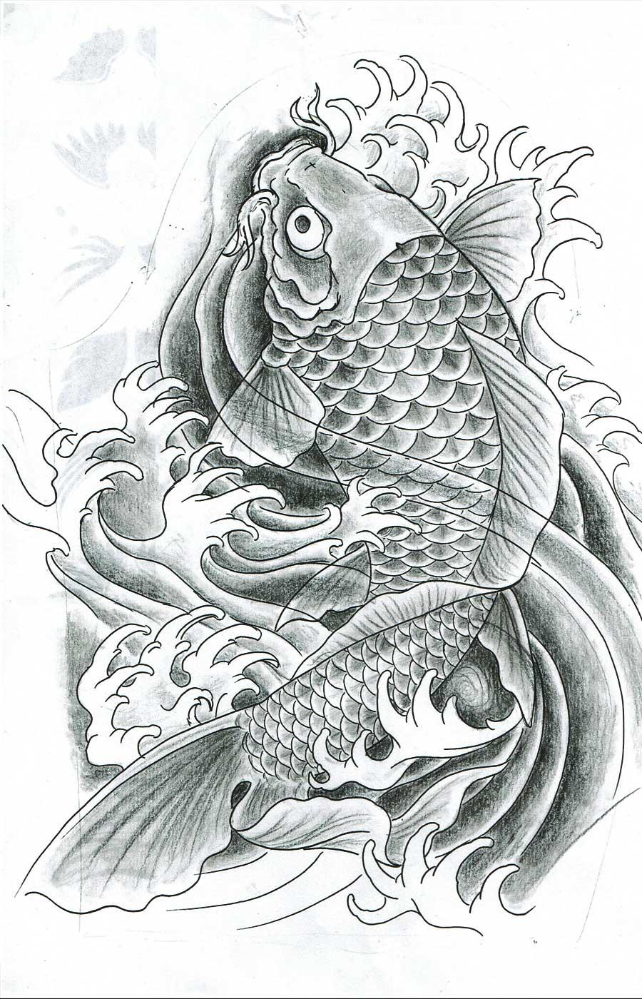 dessin de carpe koi.